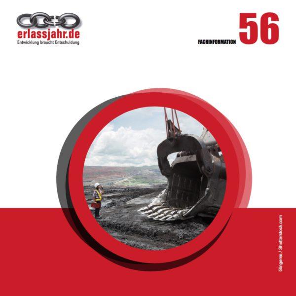 Fachinfo 56-cover